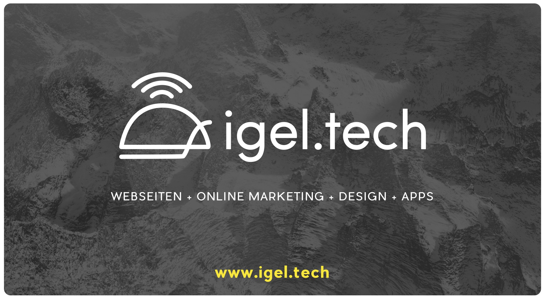 igel.tech at Startup Village 2016